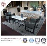 Modernistic Hotel-Möbel mit Wohnzimmer-Möbeln stellten ein (YB-New1)