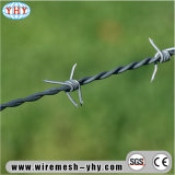 Il campo protegge la rete fissa galvanizzata del filo del nastro metallico