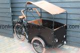 Elektrische Driewieler 250W/350W de la carga eléctrica Trike/carga E Bike/Familia Trike de Carga/carga de 3 ruedas bicicleta/500W Los partos de tres ruedas W cojín y el techo solar