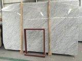 Polished мраморный тщета верхний белый Carrara для ванной комнаты