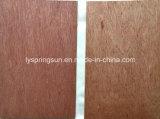 Buena madera contrachapada de lujo del precio 4m m Bintangor para Filipinas