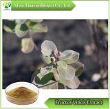 Fructus Viticis/ Vitex trifolia L. Extract en poudre