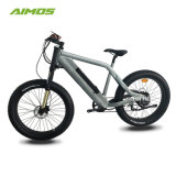 La compétitivité des prix Green Power 1000W Ebike/vélo électrique avec batterie masqué