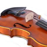 Твердые скрипка с золотым кромки