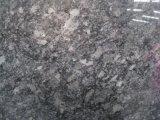 Стали серого гранита слоя для кухни и ванной комнатой/стены и пол