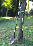 Herramientas de jardín D en forma de pala de acero forjado Pala de jardín con mango de fibra de vidrio