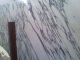 حجارة طبيعيّ بيضاء [أربسكتو] [فغلي] [بويلدينغ متريل] رخاميّة