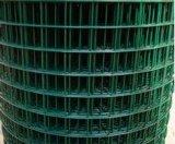 Il PVC ha ricoperto/rete metallica galvanizzata di Weled per obbligazione