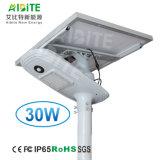 indicatore luminoso solare astuto del giardino della via di 30W LED con la lampada solare registrabile