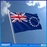 Preiswerte kundenspezifische nationale Land-Großhandelsminimarkierungsfahnen auf einem Stock, kundenspezifische Minimarkierungsfahnen