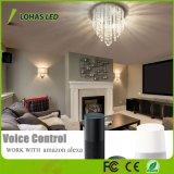 15W WiFi intelligente Minileuchter-Farbe, die LED-Kristallleuchter-Beleuchtung für Hauptdekoration ändert