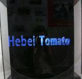Holográfica en 3D LED pantalla Fan