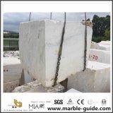 Новые Calacatta белого камня мрамор для продажи (строительство/пол и стены/декора/создание/природных/дешевые/Китай/Разработано/оптовая и кухней и ванной комнаты)