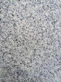 Nieuwe G603, Nieuw Kristal Padang - Nieuw Grijs Graniet (YN -603)