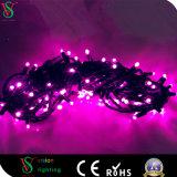 세륨 증명서를 가진 자주색 크리스마스 LED 끈 빛