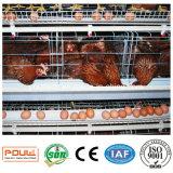 肉焼き器の層および若めんどりのための卸し売り動物のケージの養鶏場の鶏のケージ