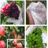 Ткань PP Spundond Nonwoven для плодоовощ & овощ защищают крышку Va-127