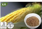 100% Natural Zea Mays Extracto de seda Extracto / Corn: Acid Maizenic, la vitamina K, mucílago, saponinas, alantoína, tanino