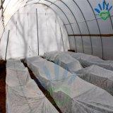100% بوليبروبيلين دفيئة ظل قماش زراعة خيمة بناء