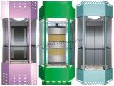 Ascenseur d'observation avec capacité 1000kg Ascenseur pour passagers