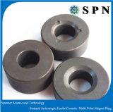 Núcleo permanente do ímã da ferrite para anéis aglomerados motor do ímã