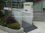 El uso público Silla de Ruedas ascensor para minusválidos