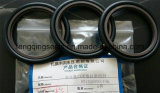 Hbts PTFE + Bronze + NBR RS Step Seal