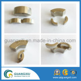 Dauermagnetcs-Segment-MotorNdFeB Magneten