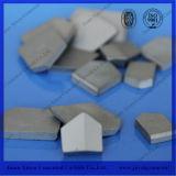 Yg6 Yg8 Yg13 Cobalt Alloy Tungsten Carbide for Mining