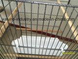 高品質の平屋根Bc102が付いている取り外し可能な金属の育成かオウムまたは鳥または飼鳥園のケージ