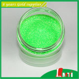 Ultra robusto Fine Glitter para Fabric Shoes
