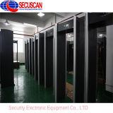 De Gang van de Inspectie van de veiligheid door de Detector van het Metaal voor Ingang