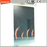 Het 419mm Digitale Af:drukken/het Zuur van uitstekende kwaliteit van Silkscreen van de Verf etst/Berijpt/gemaakt het Patroon/het Gehard glas voor Keuken, de Bovenkant van de Lijst met SGCC/Ce&CCC&ISO aan