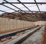 販売の鉄骨構造のニワトリ小屋