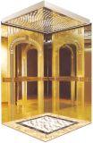 AC-Vvvf Drive Gearless Motor Home Villa Elevator avec technologie allemande (RLS-143)