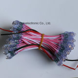 het Lichte Koord van het Pixel van de LEIDENE 9mm/Pink DC5V/12V Woorden van de Reclame voor Aanplakbord
