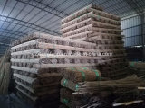 Bambú natural de Plastic para el uso de la agricultura