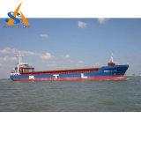 nave da carico dell'elemento portante all'ingrosso 19000dwt