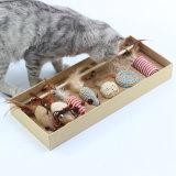 Het grappige Verschillende Speelgoed van Ith van het Pakket van de Stok van de Kat