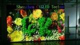 Bekanntmachender LED-Bildschirmanzeige P4 farbenreicher LED-Innenschaukasten