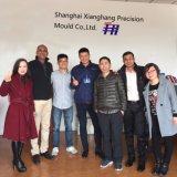 Soem-kundenspezifische Plastikspritzen-Teile gebildet in Shanghai