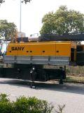 Gru cingolata della grata di Sany 55t Scc550