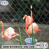 중국 스테인리스 철사 밧줄 동물원 그물세공