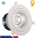 Comercio al por mayor nueva ronda de 8 pulgadas COB 6-30W Downlight LED de techo