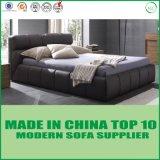 تصميم حديث ظلام - خضراء بناء سرير