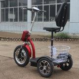 Faltbares elektrisches besichtigenelektrisches Fahrrad des fahrzeug-3-Wheel für Behinderte
