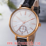 Hot Sale Fashion OEM / ODM Mesdames montres à quartz (Wy-17031)