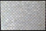 白い淡水のシェル20*10のモザイク