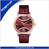 Personnalisation de Morden Mesdames Watch Women's Watch avec placage IPG