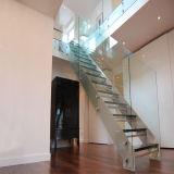 緩和されたガラスの柵が付いている現代内部の純木のまっすぐなステアケース